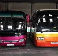 Bus Transport Services