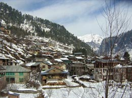 Manali Yellow Pages